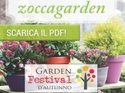 anteprima_scarica_pdf2