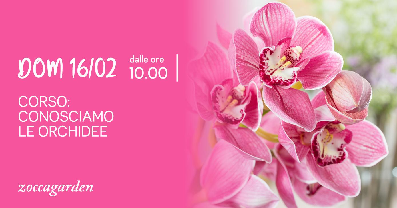 Corso Orchidee